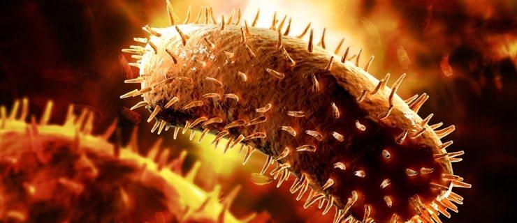 Самые опасные инфекции в мире