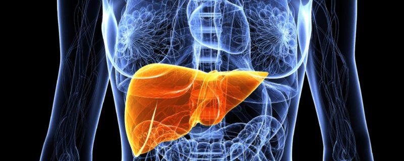Цирроз печени — заболевание вызывающее разрушение печени