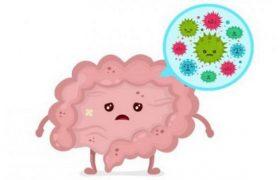 Три самых вредных для здоровья мифа о бактериях
