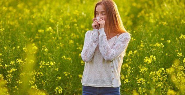 Ученые создали вакцину против сенной лихорадки