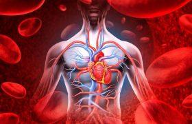 4 важных признака плохого кровообращения