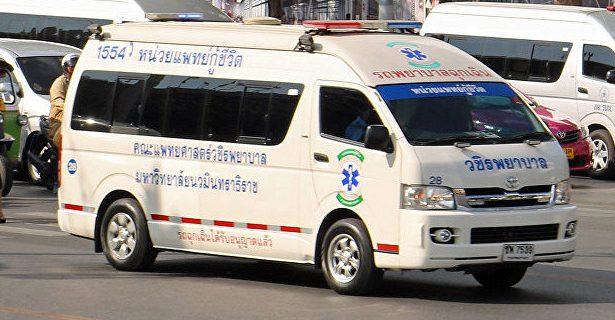 В Таиланде россиянин впал в кому после заражения лихорадкой Денге