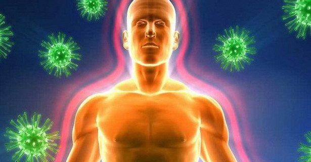 Открыт способ сделать иммунитет крепче за три дня