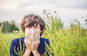4 аллергена, которых мы не замечаем