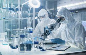 Ученые назвали самых опасных супербактерий