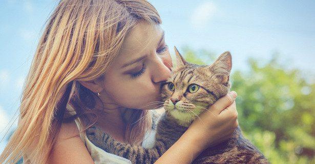 Аллергия на кошек станет излечима