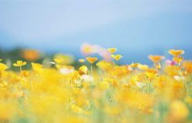 Врачи предупредили о «летних» опасностях для здоровья