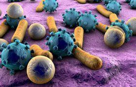 Симптомы, признаки и лечение кишечного гриппа