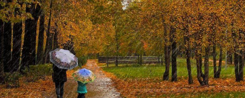 Как не заболеть после того, как промок под дождём