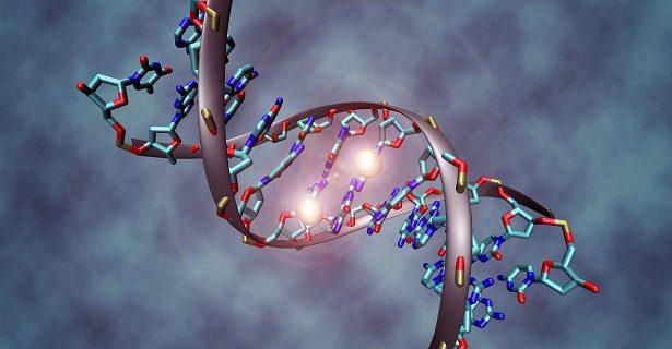 Иммунитет может мешать редактировать геном людей