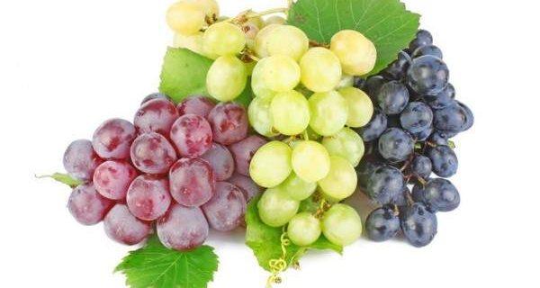 Названа ягода особенно полезная в сезон простуд
