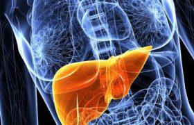 Токсины, которыми мы регулярно пичкаем свой организм