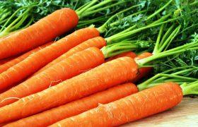 Назван овощ, помогающий организму бороться с вирусами