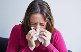 Некоторые комнатные растения способны защитить от гриппа