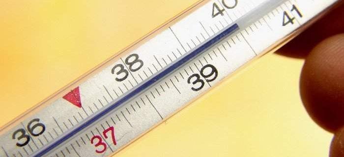 Стало известно, что можно и чего нельзя делать при высокой температуре