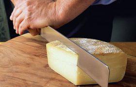 Бактерии сыра могут быть полезными в лечении аллергии