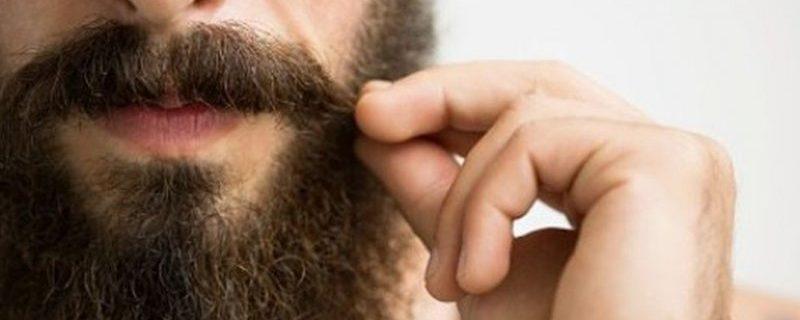 Микробов в мужской бороде оказалось больше, чем в собачьей шерсти