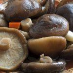 Подтвердилась способность грибов шиитаке позитивно влиять на иммунитет