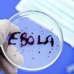 Смертельный африканский вирус вышел за пределы Конго