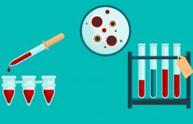 Отвечаем на главные вопросы про собачий иммунитет