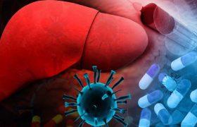 Около 330 млн человек в мире являются носителями гепатита В и С