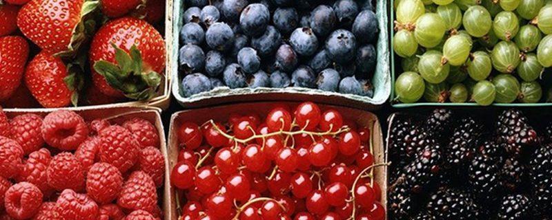 Врач-аллерголог: при проблемах со здоровьем ягоды нужно есть термически обработанными