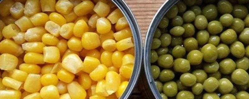 От витаминов до опасных бактерий: что может содержаться в консервах