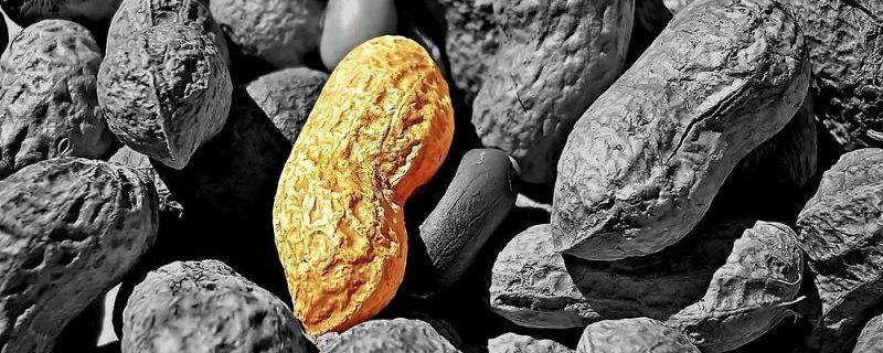 Иммуннотерапевтическая таблетка не лечит от аллергии на арахис
