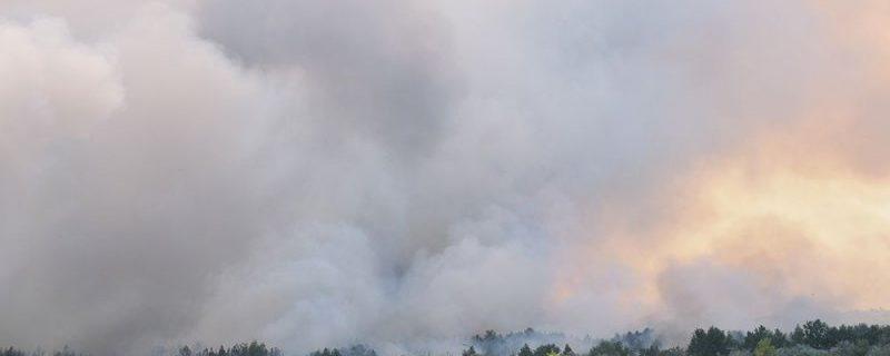 Жертвам лесных пожаров грозят годы кашля