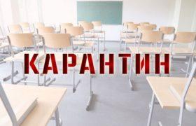 В школах Ростова-на-Дону объявлен карантин по вирусной пневмонии