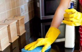 Почему ученые против использования дезинфицирующих средств в домашних условиях