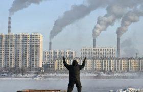 5 микроэлементов, которые защищают от вредного воздействия загрязнения воздуха
