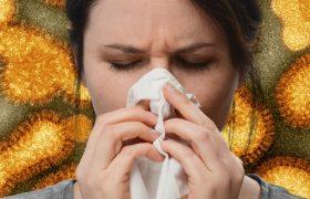 Грипп или простуда: вирусы одного заболевания дают иммунитет от другого