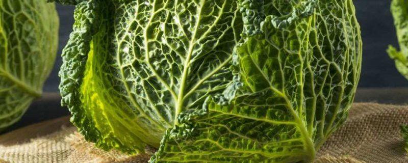 Эти два крестоцветных овоща позволяют лучше усваивать витамин D