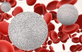 Болезни, на которые указывает высокий уровень лейкоцитов