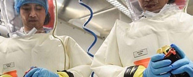 Вспышка короновируса могла произойти из-за утечки в лаборатории