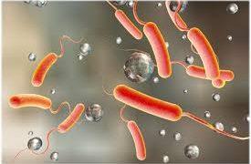 Холера — основные клинические симптомы