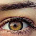 В наших глазах. Кто живет у вас под веками