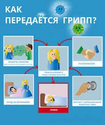 Защита от любого гриппа