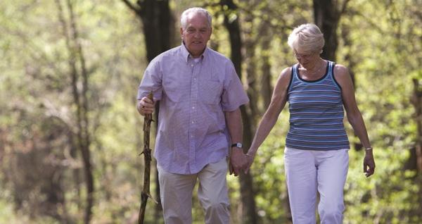 Растительный белок увеличивает продолжительность жизни