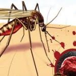 Лекарства от ВИЧ помогут при малярии