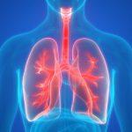 Фермент может оказаться эффективным при лечении опухолей и воспалительных заболеваний легких