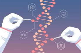 Исследователи по-новому использовали систему редактирования генома