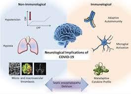 COVID-ассоциированная аносмия. Практические советы врачу