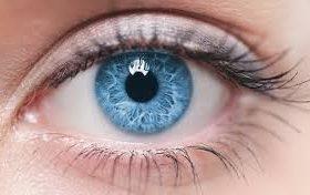 Ученые получили особые кислоты, защищающие от слепоты