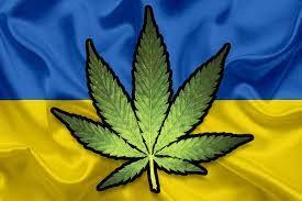 Украина легализовала медицинскую марихуану