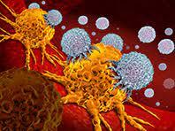 Уникальные соединения могут перевернуть терапию ВИЧ