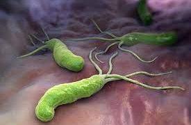 Лечение заболеваний, ассоциированных с инфекцией Helicobacter pylori