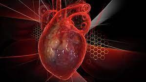 Оберегая горло, сбережете и сердце