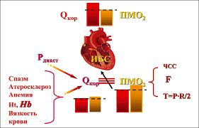 Ишемическая болезнь сердца, желудочно-кишечные кровотечения и железодефицитная анемия: принципы диагностики и лечения